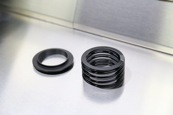 REPLACEMENT SCALE SPRING